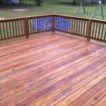 Deck Cleaning After